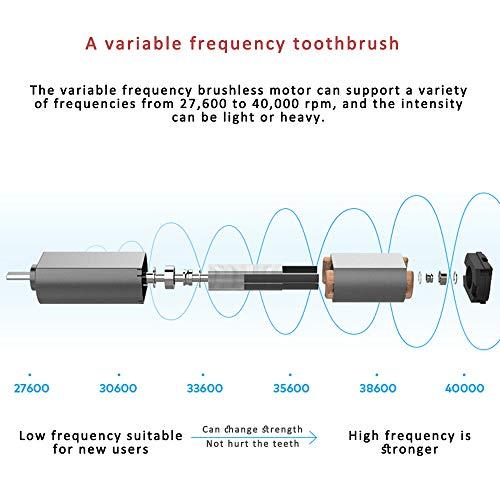 Oclean SE Intelligent Sonic - Cepillo de dientes - Motor de frecuencia variable - APP Análisis inteligente de datos - Solución de cepillado personalizado ...