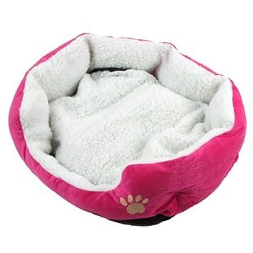 Anself Casa para mascotas Cama para perros y Gato: Amazon.es: Productos para mascotas