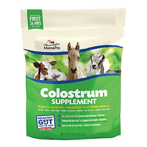 Manna Pro Colostrum Supplement Milk Newborn Farm Animals Horse and More 1st 24 hrs