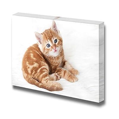 Cute Little Red Kitten Lies on White Fur Blanket Cute Pet Animal Photograph - Canvas Art Wall Art - 12