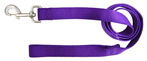 Image of Hamilton Single Thick Nylon Dog Lead, 1-Inch by 4-Feet, Purple