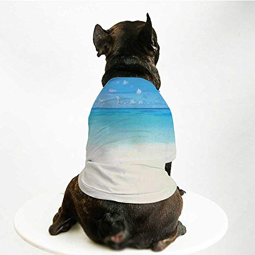 (YOLIYANA Ocean Soft Pet Suit,Paradise Beach in Tropical Caribbean Sea with Fantastic Sky View Calm Beach House Theme Decorative for Cats and Dogs,M )