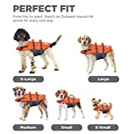 Outward-Hound-Granby-Dog-Life-Jacket