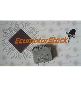 CENTRALITA Motor ECU 0261200739 0 261 200 739: Amazon.es ...