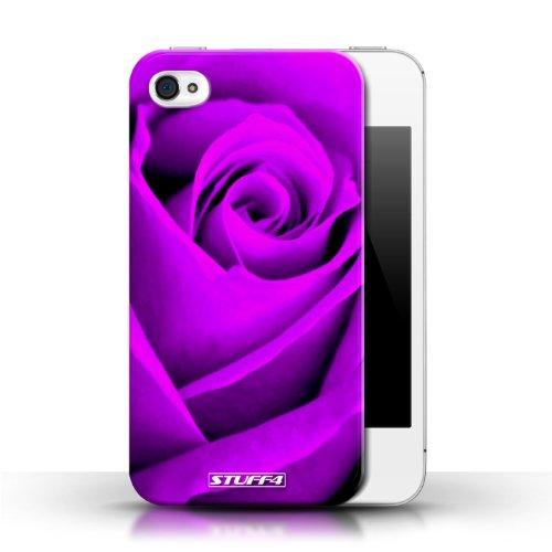 Etui pour Apple iPhone 4/4S / Pourpre conception / Collection de Rose
