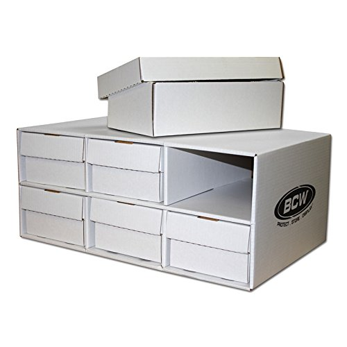 Shoe House with 6 Shoe Box Storage Boxes by BCW