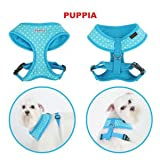 Puppia Dotty Dog Harness Medium Blue, My Pet Supplies