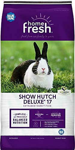 (Blue Seal Show Hutch Deluxe Rabbit Food 10 Pounds )