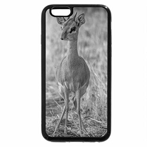 iPhone 6S Plus Case, iPhone 6 Plus Case (Black & White) - Alert Antelope