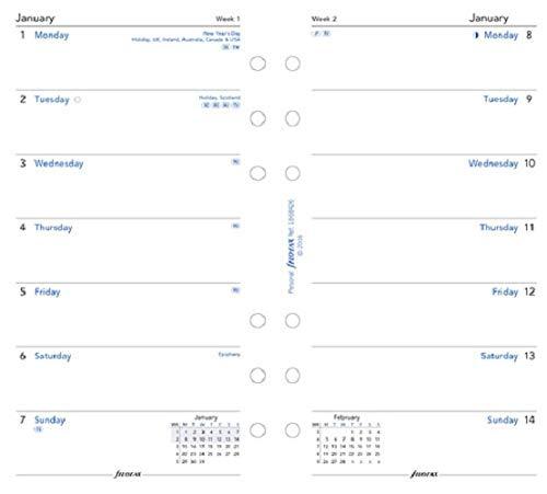 Amazon.com: FiloFax 68426-2020 - Recambio para agenda ...