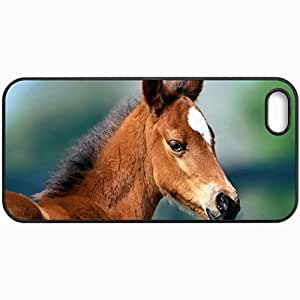 Customized Cellphone Case Back Cover For iPhone 5 5S, Protective Hardshell Case Personalized Stallion Head Ears Muzzle Black