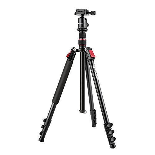BC Master Kamerastativ 200cm/ 23cm TA533M 2-in-1 Leichtgewicht Magnesium Aluminium Tragbares Stativ Einbeinstativ Kit mit Kugelkopf, Reisestativ für Canon Sony Nikon DSLR Kamera Dreibeinstativ