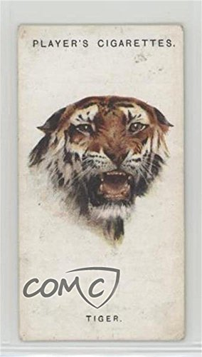 The Tiger (Trading Card) 1931 Player's Wild Animals' Heads by Arthur Wardle - [Base] #46 from Unknown