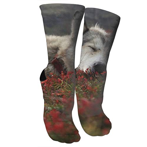 Stocking Christmas Soft Fur - Xixioou Animals Wolf Wolves Canines Fur Sleep Compression Socks Training Socks Crew Athletic Socks Long Sport Soccer Socks Soft Knee High Sock Christmas Socks for Men Women