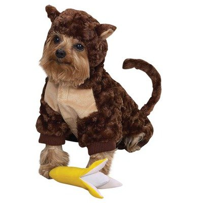 Zack and Zoey Monkey Costume Lrg, My Pet Supplies