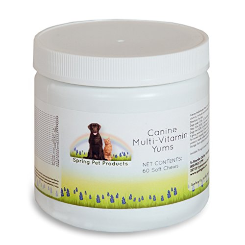 Spring Pet Canine Multi-vitamin Yums 60 Count ~ for Use in Dogs and Puppies Only ~ Veterinary Formula Made in USA