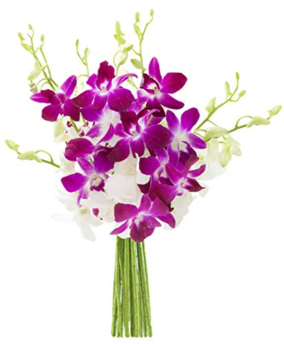 KaBloom Exotic Opal Orchid  Bouquet of Purple and White Orchids from ()