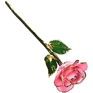 Living Gold Red 24k Gold Rose Real Rose Dipped in Gold 66