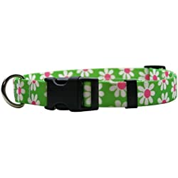 """Yellow Dog Design Green Daisy Dog Collar 3/8"""" Wide and Fits Neck 8 to 12"""", X-Small"""