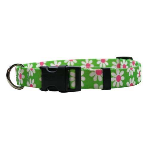 (Yellow Dog Design Green Daisy Break Away Cat Collar, One Size Fits All)