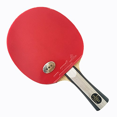 Palio Expert 2 Table Tennis Racket Case