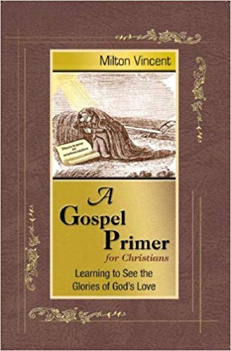 A Gospel Primer for Christians: Learning to See the Glories of God's Love