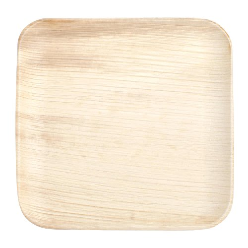 Cater Naturals - 25 Disposable Palm Leaf Party Plates - 6.5 inch square - Compostable, Organic & Eco Friendly - Decorative & Premium Quality - Durable & Microwave Safe - Better than Wooden or Plastic