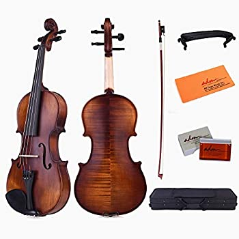 The Best Violin Case Reviews - 2019 Buying Guide