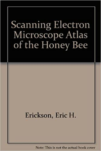 A Scanning Electron Microscope Atlas of the Honey Bee