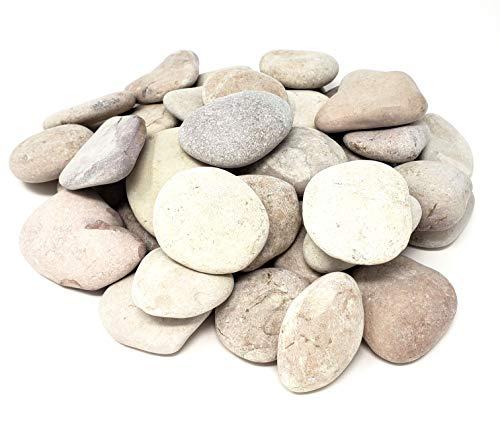 Capcouriers Garden Rocks (Violet) - Landscaping Rocks for Garden and Landscape Design - 5 Pounds