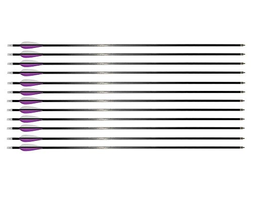 I-sport 12 Pack Replaceable 31-inch Carbon Shaft Arrows 350 Spine W Plastics Fletching Screw-in Arrow Tips purple