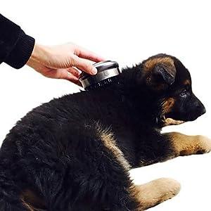 Výsledok vyhľadávania obrázkov pre dopyt electric pet massager