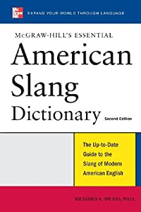 dictionary of everyday american english expressions pdf