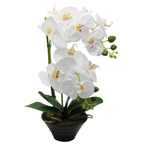 CoziBreath Artificial Flowers Orchid Arrangement Table Centerpiece Large Tall Home Decor Large (White)