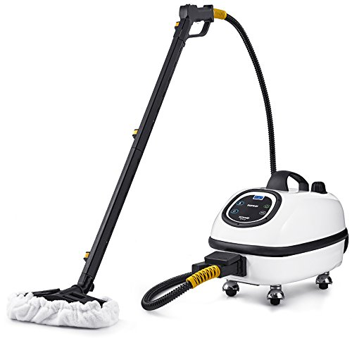Best Review Of Dupray Tosca Steam Cleaner