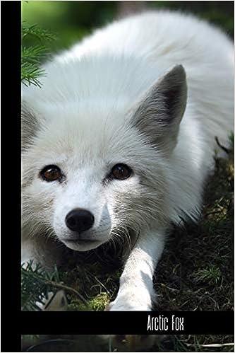 Fox small notebook Animal Print Scandi Style