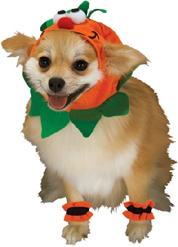 Rubie's Pet Costume, Small, Pumpkin Headpiece with