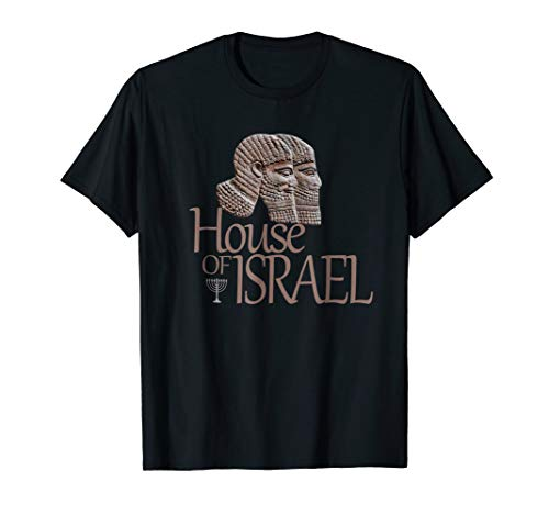 Mens Hebrew Israelite Tribe Judah Clothing House Israel T-Shirt Large Black