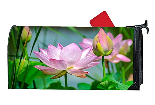 Water Lily Flower Lotus Decorative Magnetic Mailbox Cover Home Outdoor Vinyl Standard Mailbox Wrap with Animals Design 6.5 x 19 Inches