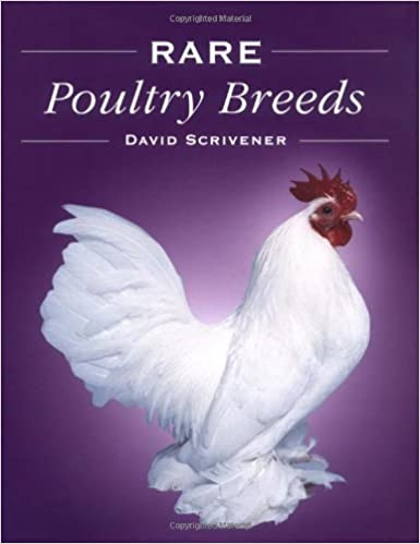 Buy Rare Poultry Breeds Book Online at Low Prices in India