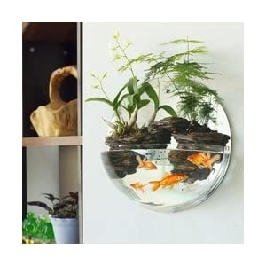 O.RoseLif Round Wall Hydroponic aquarium Glass Vase round glass fish tank Home Decoration Vasos Decorativos Fish Tank christmas