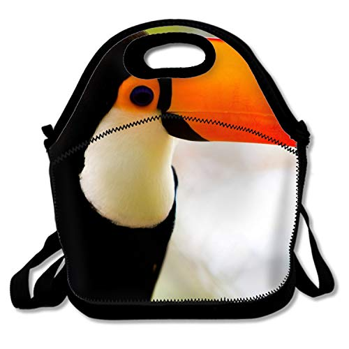 Insulated Lunchbox Tote Animal Toucans Bird Lunch Bag for Women Men ()