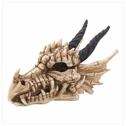 - Dragon Skull Treasure Box