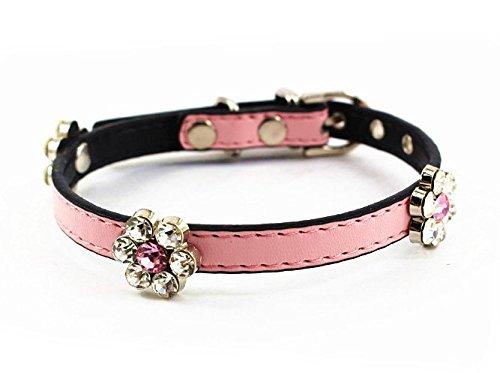 Mora Pets Diamond Designer Available