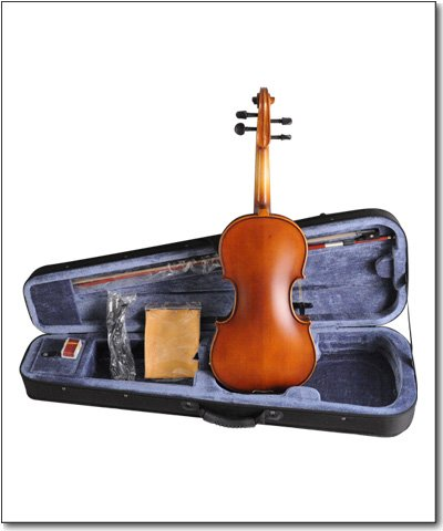 Aileen VE102B 4 strings Electric Violin with EQ,natural wood color by Aileen