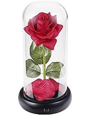 LCCL La Belle et la Bête Rose Nuit Lumière