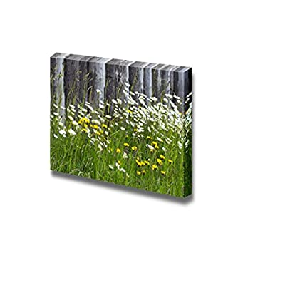 Canvas Prints Wall Art - Wild Flowers on The Meadow | Modern Wall Decor/Home Decoration Stretched Gallery Canvas Wrap Giclee Print & Ready to Hang - 12