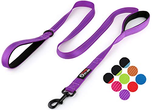 Primal Pet Gear Dog Leash 6ft Long - Traffic Padded Two Handle - Heavy Duty - Double Handles Lead for Control Safety Training - Leashes for Large Dogs or Medium -