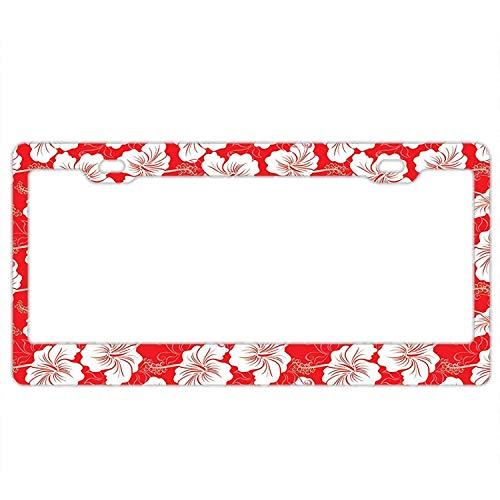 Classical Vanity (A smiling eye American Automobile Plate Frame Covers Hawaiian Flower Patterns Classical Silhouette Vanity Metal Novelty License Plate Tag Sign)