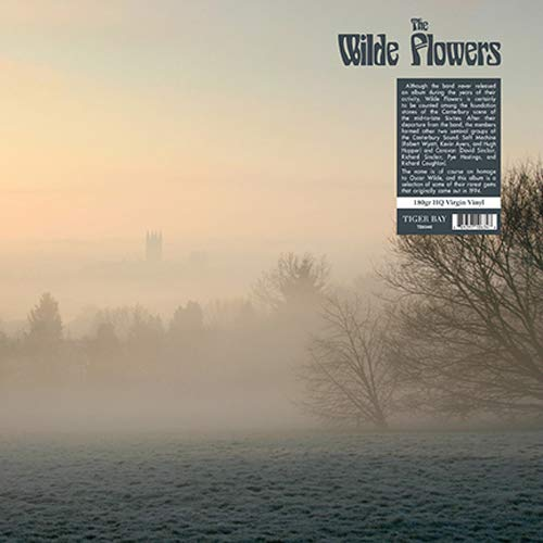 Vinilo : The Wilde Flowers - Wilde Flowers (180 Gram Vinyl)